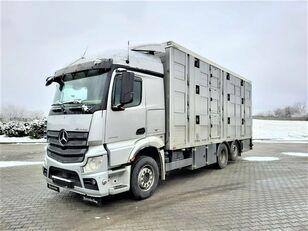 камион за превоз на животни MERCEDES-BENZ Actros 2543 6x2